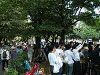「高田馬場流鏑馬」に多くの人が見学に訪れた