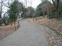 箱根山への坂道