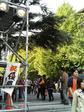早稲田祭2008の正門 ステージ前なので装飾はありません