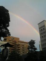 早稲田の町に現れた虹