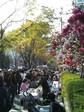 鶴巻町フェスティバル08春.JPG