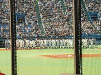 東京六大学野球・早慶戦