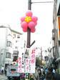 早大南門通りに飾られた風船