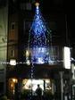 早稲田の名店・キッチンミキに輝くツリー