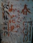 春ださくらだお花見だ、早稲田の穴八幡宮でお花見
