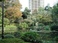 都会のど真ん中・早稲田のオアシス甘泉園